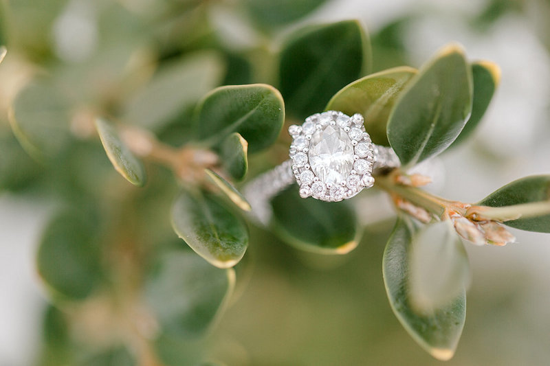 Engagement-Ring-Louisville-Kentucky-Photo-by-Uniquely-His-Photography029