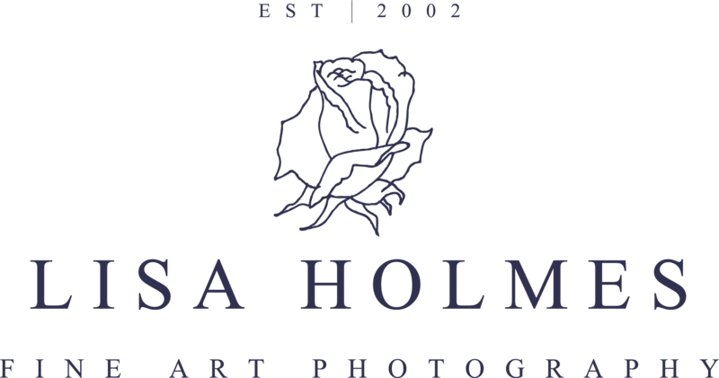 Logo of Lisa Holmes Photography