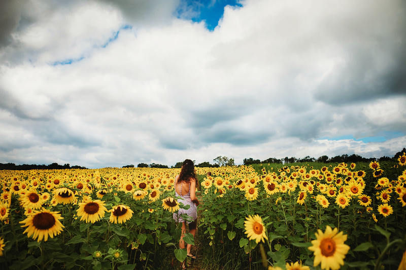 Child-in-sunflower-field