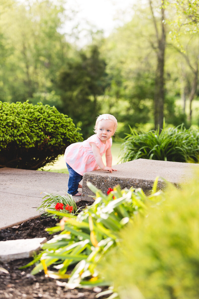 toddler climbing steps candid portrait ohio