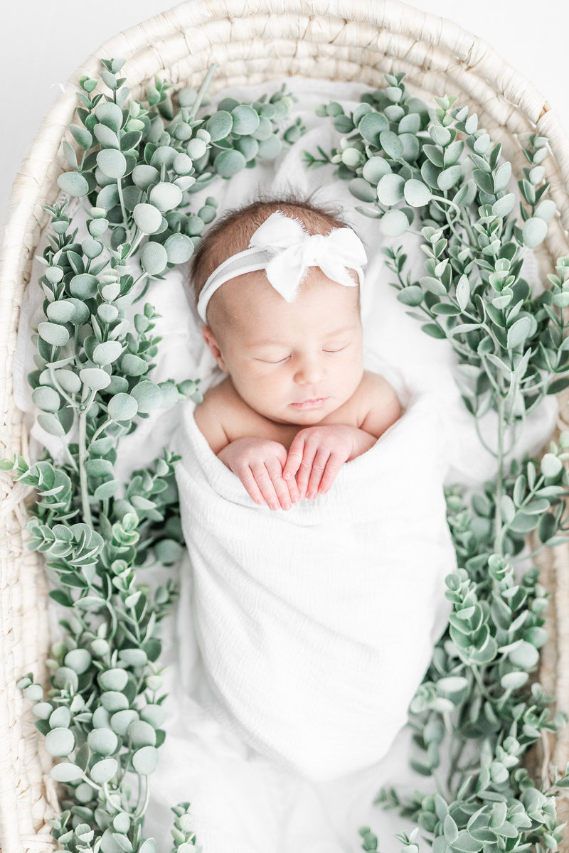 Newborn Photography Cleveland-17