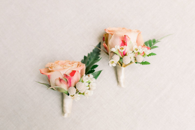 Close up of two boutonnieres with blush garden roses wrapped in silk