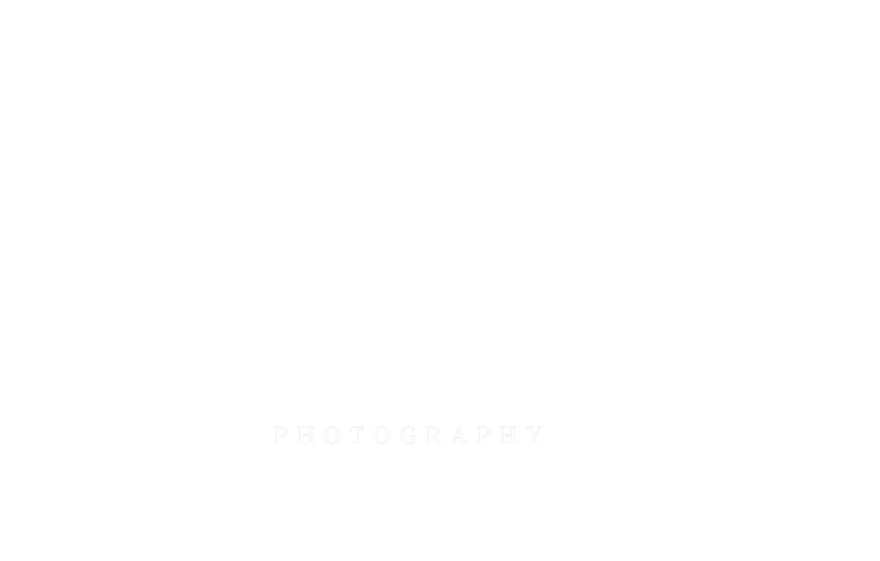 moonfly-finalwhite