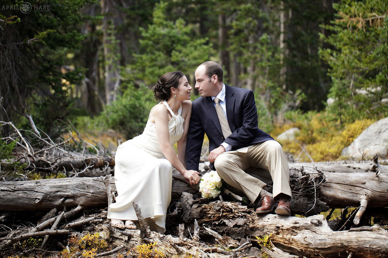 Long-Lake-Indian-Peaks-Wilderness-Elopement-Location-in-Colorado-in-the-Forest