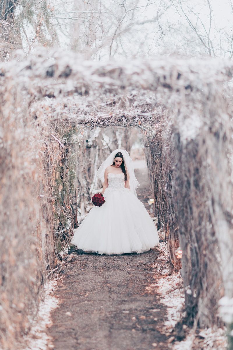 Lake Tahoe wedding photographers a bride poses under a snowy arch