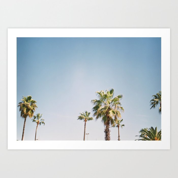 palmtrees-in-barcelona-europe-blue-sky-green-palm-trees-tropical-vibe-prints