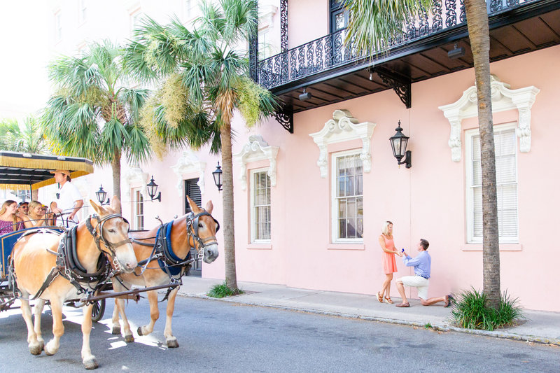 Horse and Carriage Downtown Charleston Engagement