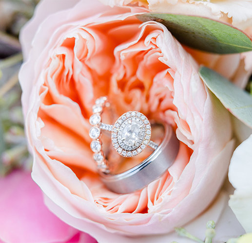 wedding rings in garden rose