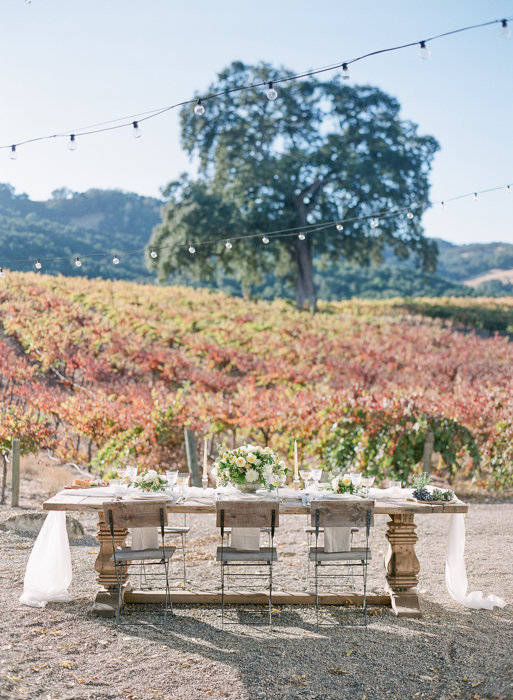 Molly-Carr-Photography-Paris-Film-Photographer-France-Wedding-Photographer-Europe-Destination-Wedding-HammerSky-Vineyards-Paso-Robles-California-Wine-Country-8
