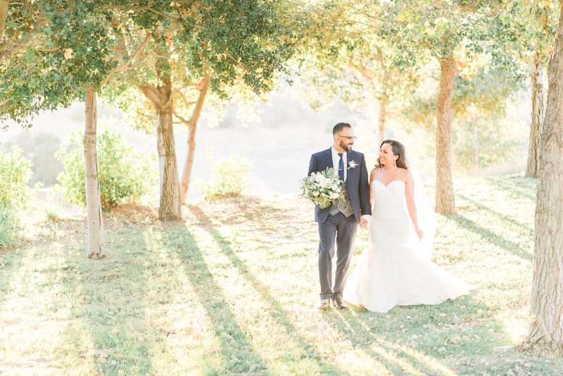 Vellano Estate Chino Hills California Wedding-19