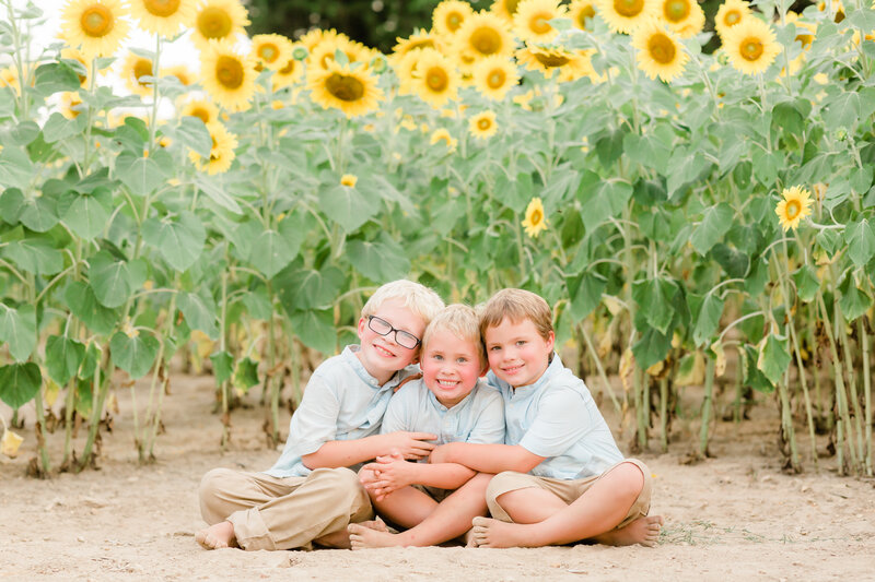 2020-07-16 Sunflower Minis with Alyssa Rachelle Photography_AR Faves-9
