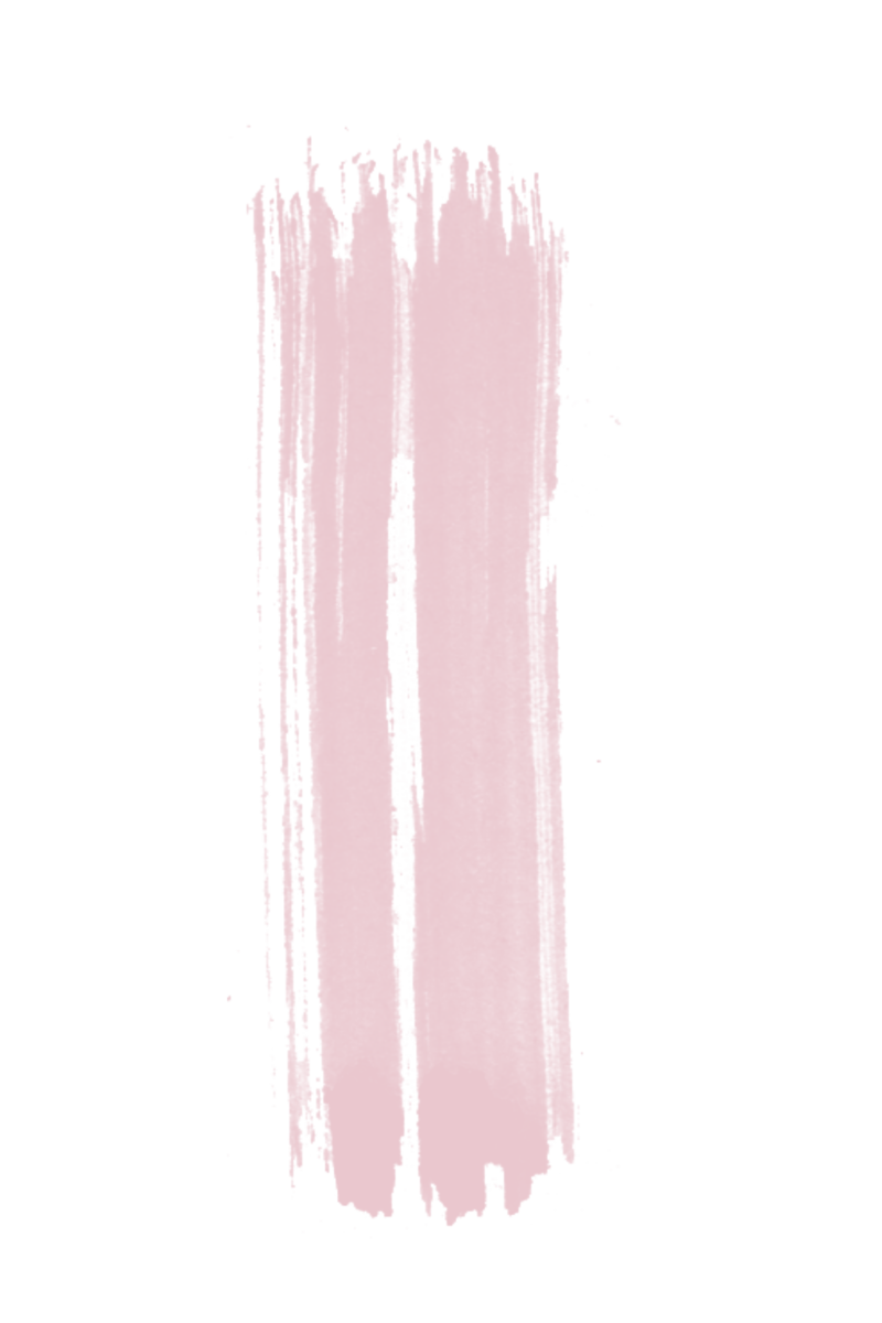 pink nude brush 15