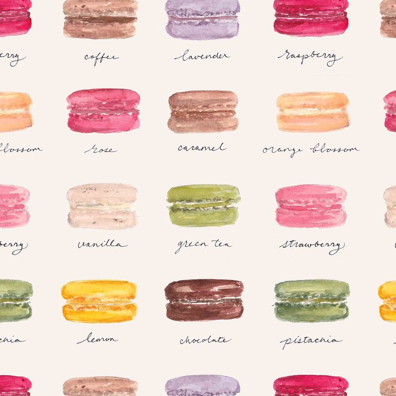 macarons gift wrap sample 2 the illustrated life