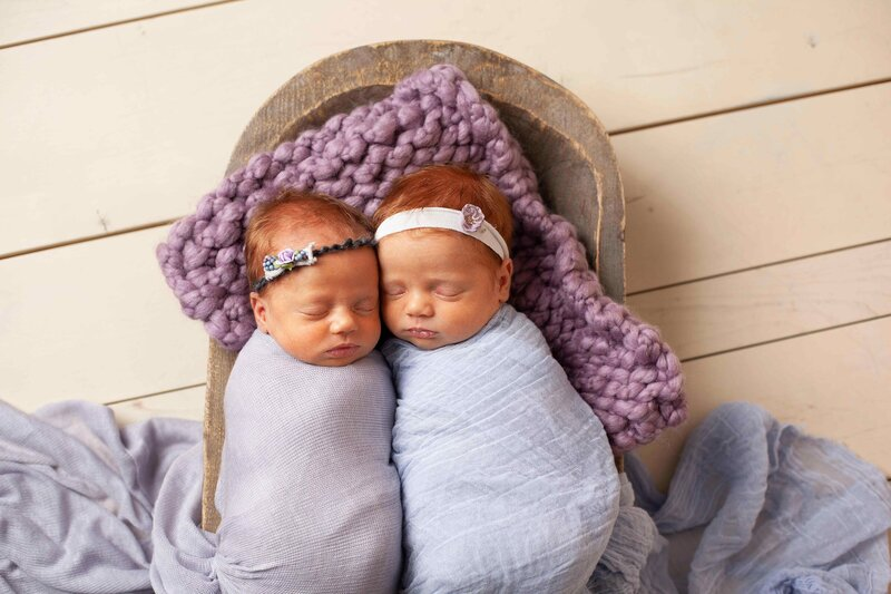 twin newborn girls purple wrap white headbands in prop