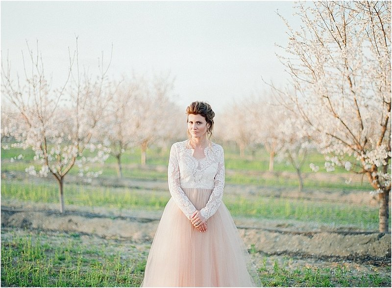 almond orchard inspiration_0018