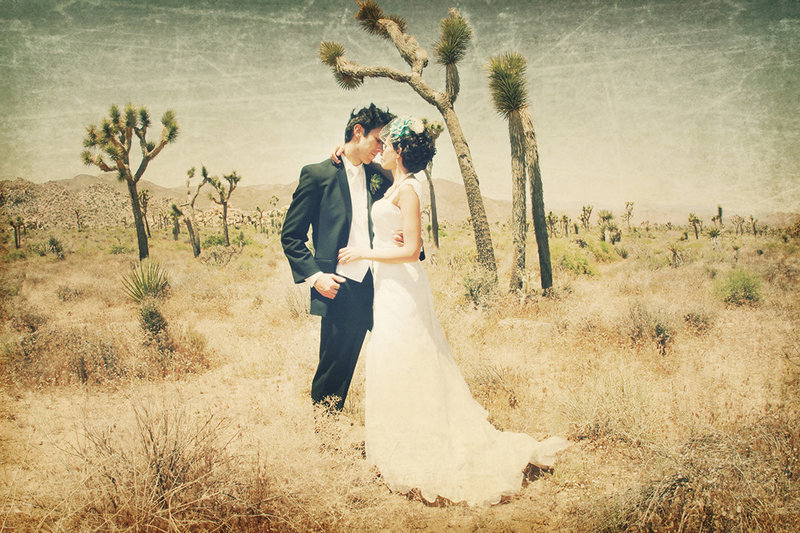 Joshua Tree trash the dress session