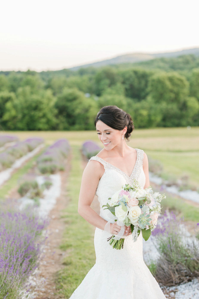 bride in lavender fields at sunset at springfield manor winery and distillery wedding by costola photography