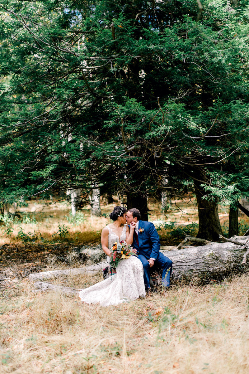 shenandoah-national-park-elopement-virginia-wedding-photographer-virginia-elopement-photographer-blue-ridge-mountains-wedding-photographer-bride-groom-portrait-fall-elopement-melissa-durham_02