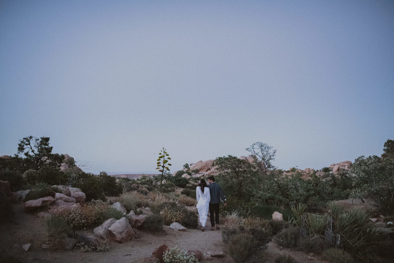 couple after eloping in joshua tree