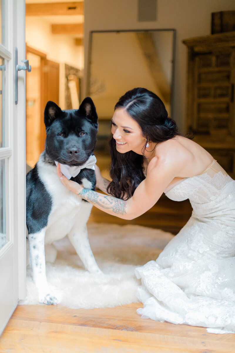 bride in berta dress with akita dog at French Inspired Private Estate wedding in charlottesville virginia by costola photography