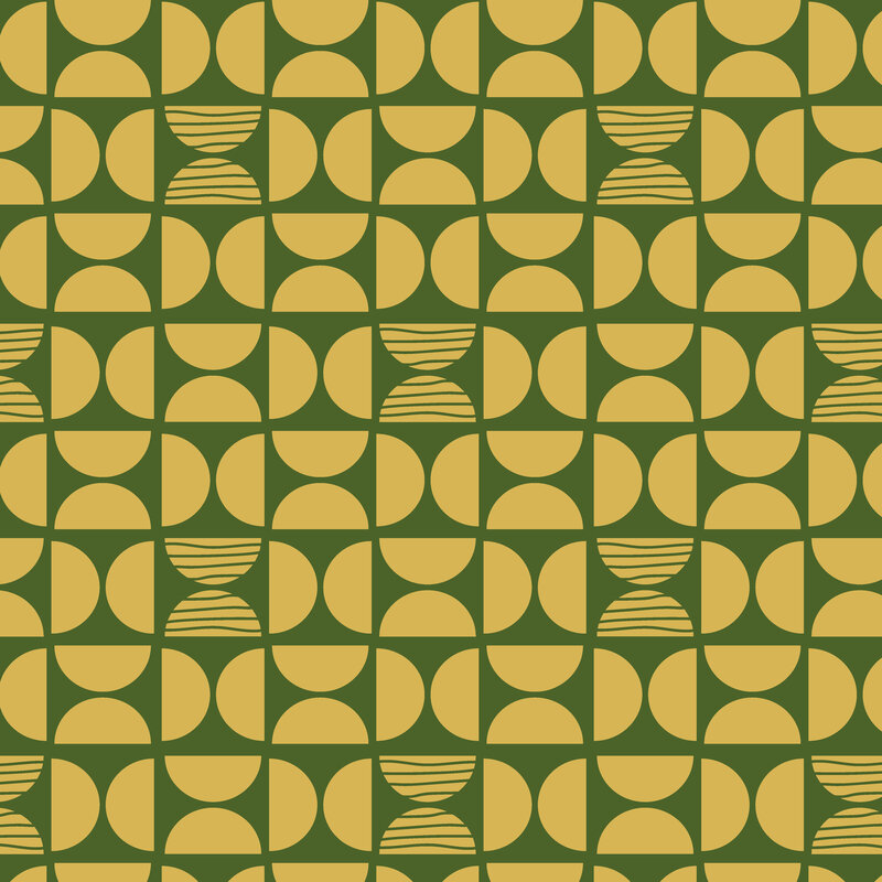 Chelsey Ashford Photography Greenville Mid Century Pattern Design