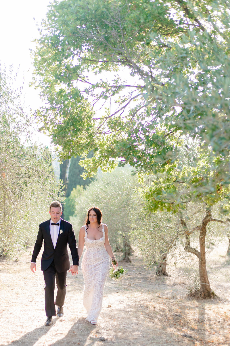 bridegrooms walking in olive trees in south of france