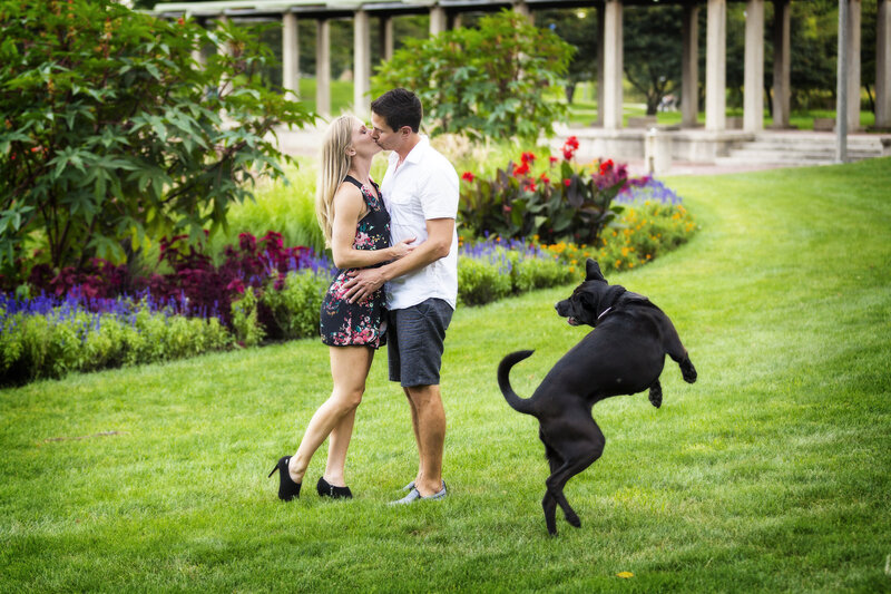 A funny engagement photo of a dog jumping in the air and looking at his parents kiss.
