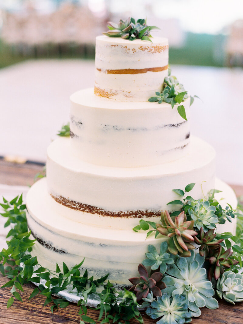 Succulent Naked Wedding Cake
