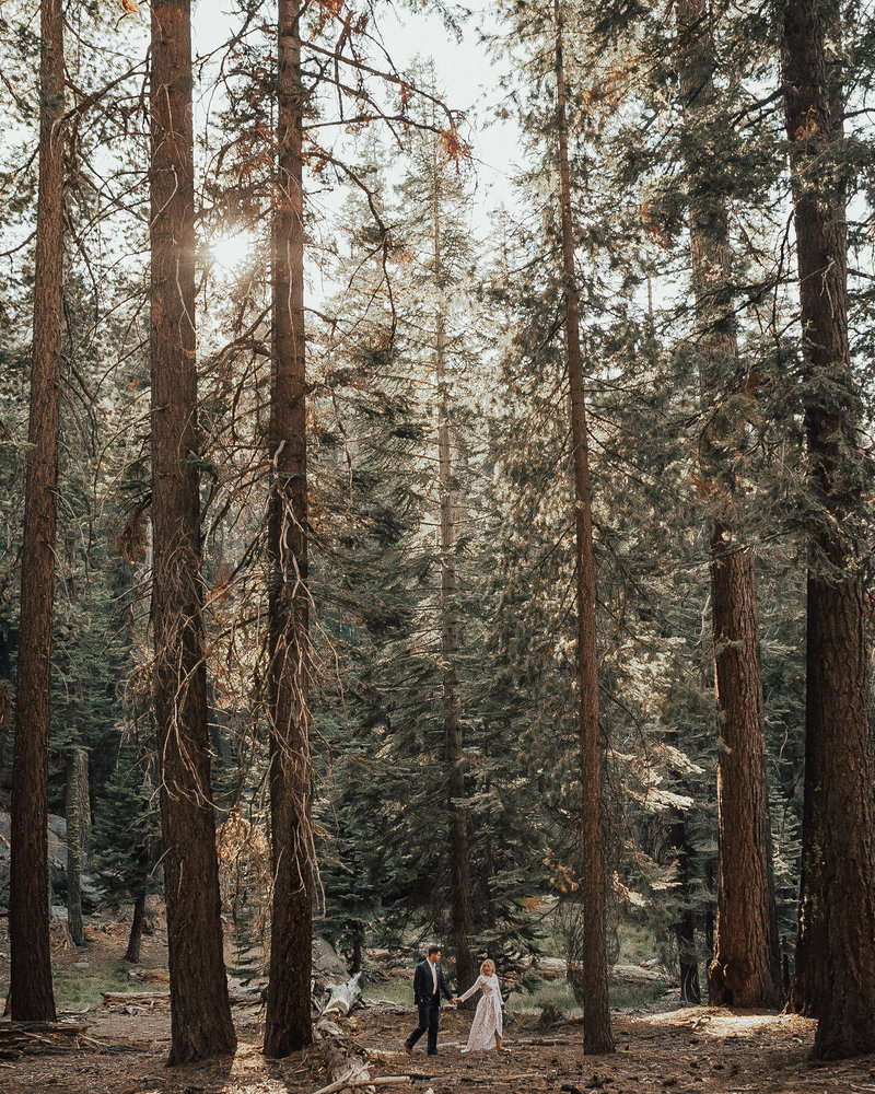 yosemite engagement pictures-7787-2