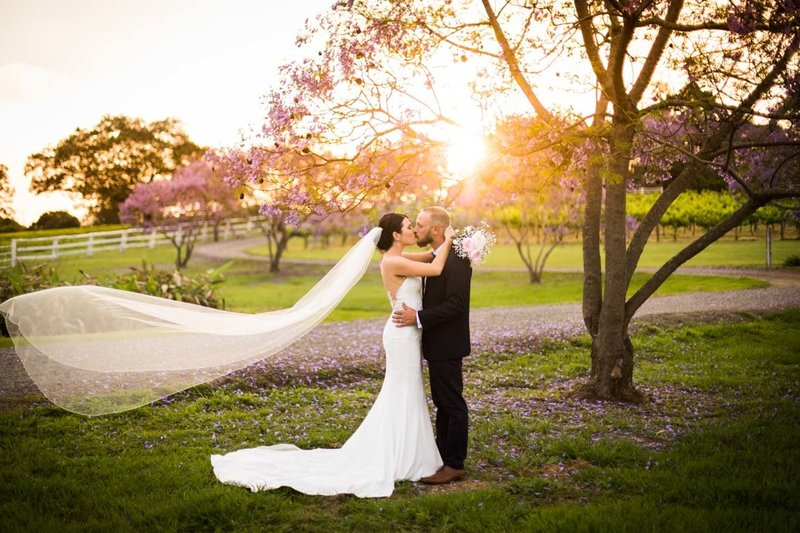Albert-River-Wines-Wedding-Photographs-35
