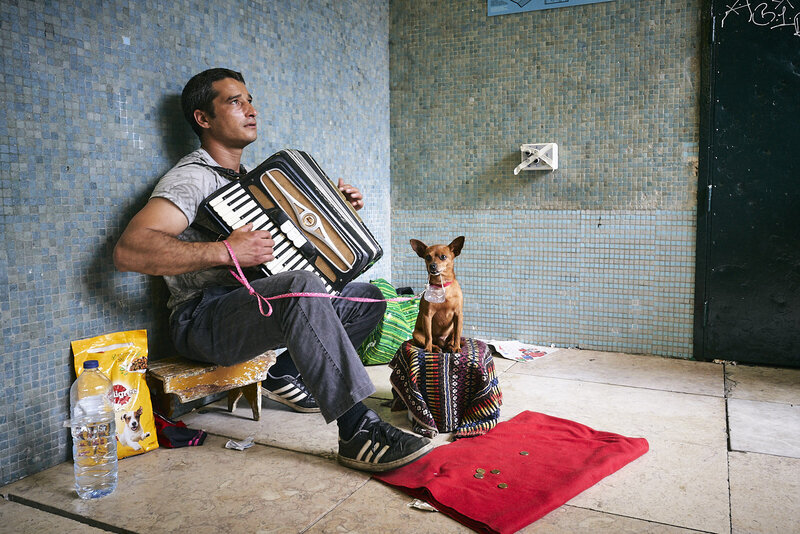 Accordion palyer with dog