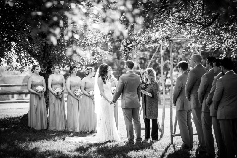 The groomsmen and bridesmaids celebrate while the wedding officiant Donna Forsythe of Lehigh Valley Celebrants delivers the custom crafted wedding ceremony.