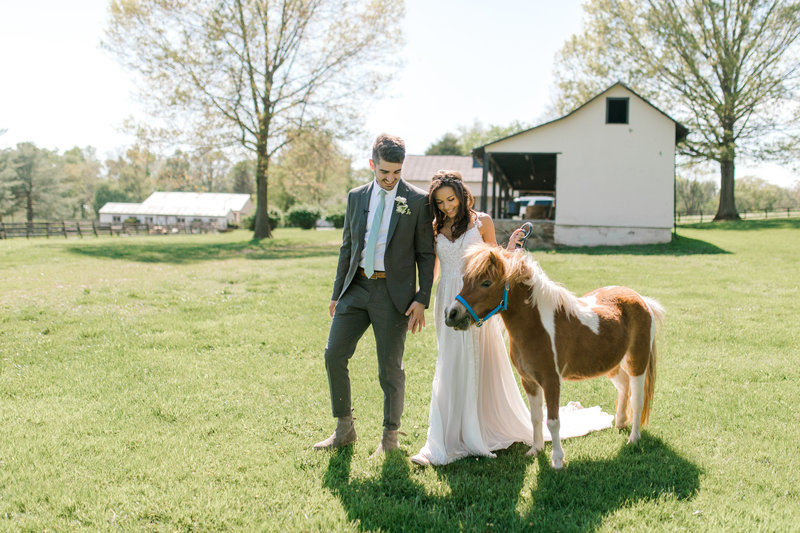 Taylor Luke Northern Virginia Wedding Photographer -34