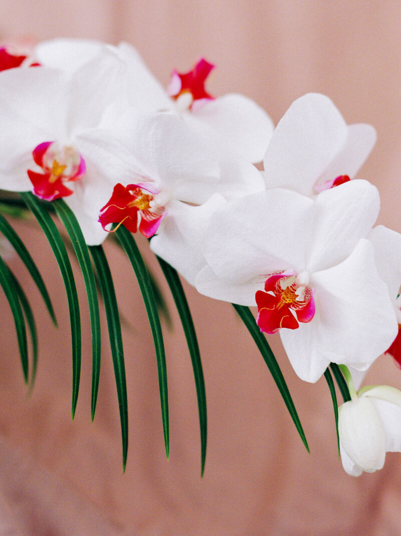 Tropical Wedding with Orchids