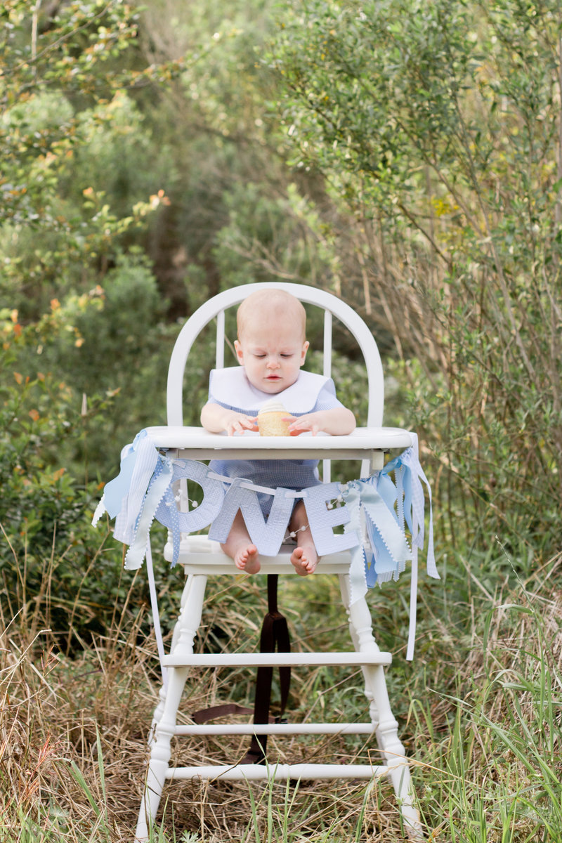 Milestones | Mandi Thompson Photography