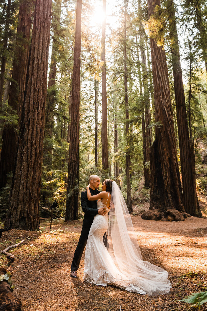 kayl-scotty-tiny-home-coastal-redwood-forest-california-elopement-56 2
