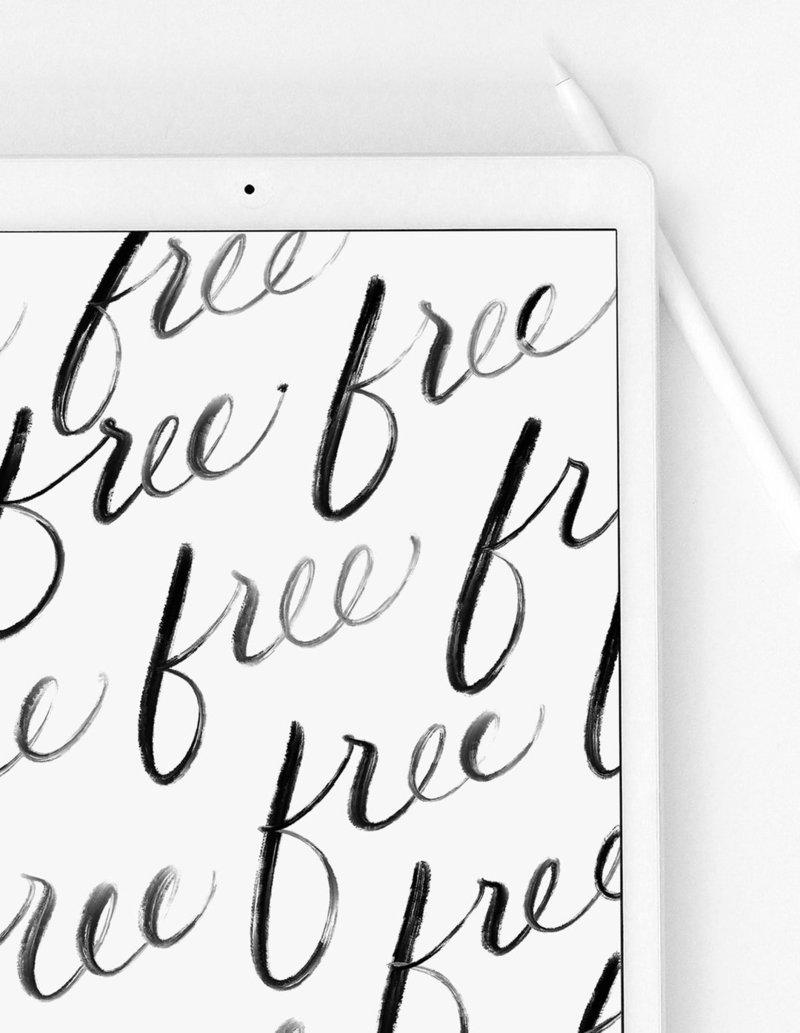 Calligraphy + Guides | Shop Saffron Avenue, Brand Styling