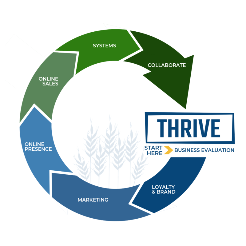Thrive Cycle (2)