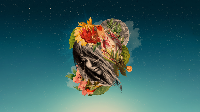 Collage of woman's head with birds flowers moon and stars