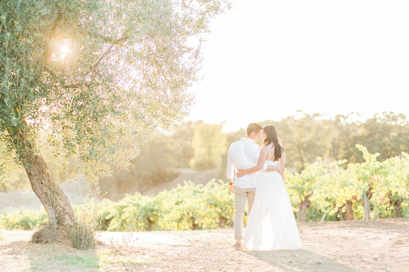 Sunset vineyard engagement session, Sonoma wine country, California