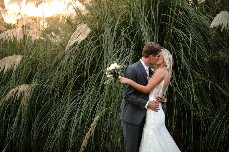 Just married couple embracing and kissing in front of lush beach foliage