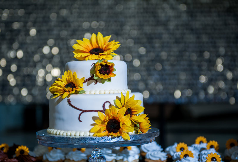 Fargo Air Museum Wedding Venue Kris Kandel Photographers (4)