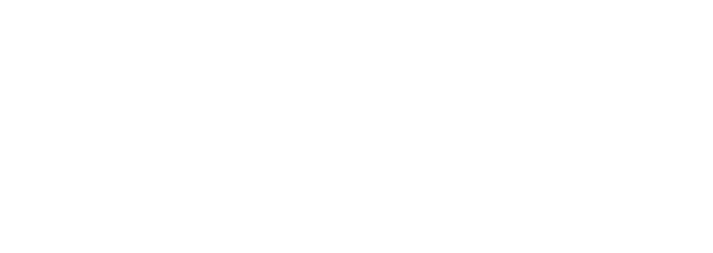 Morgan V Logo 1_white