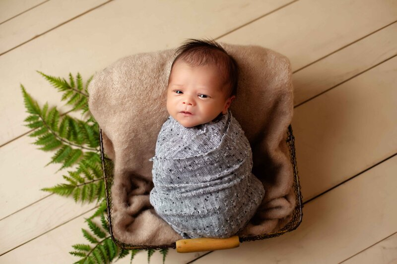 newborn boy wrapped in grey with tan and green leaves