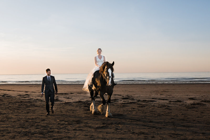 shire horse on beach with wedding couple