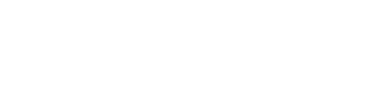PartyOfTwo_Logo_FINAL-08_Horizontal_LightGray