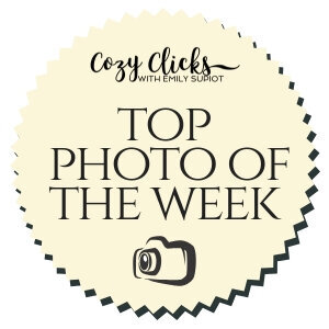 Cozy+Clicks+Top+Photo+of+The+Week+Badge+(1)
