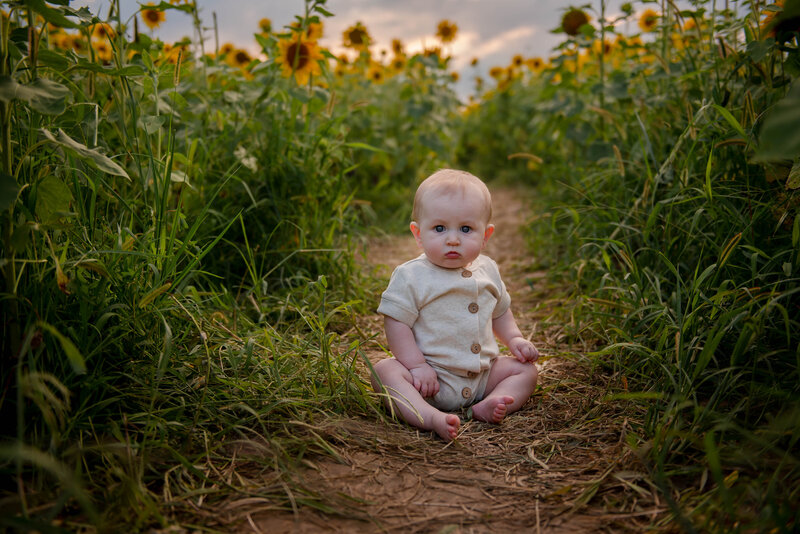 Cincinnati Sunflower Mini Session