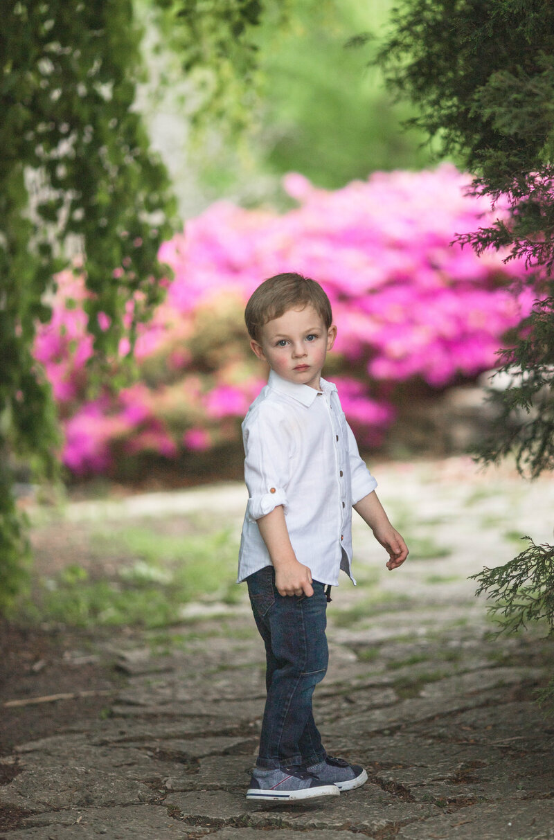 Springfield IL Family Photographer