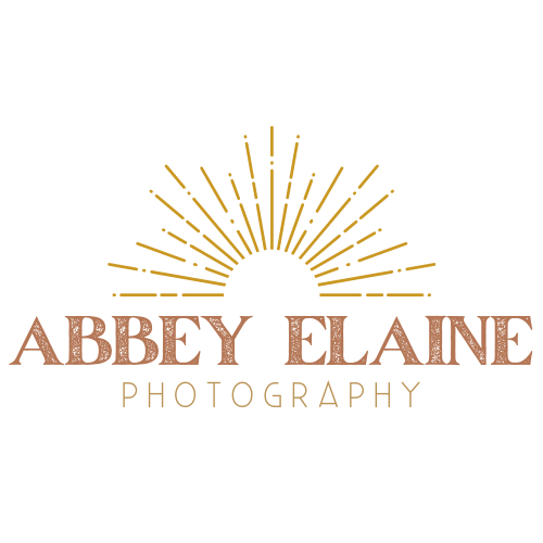 Copy of Abbey Elaine Transparent (1)
